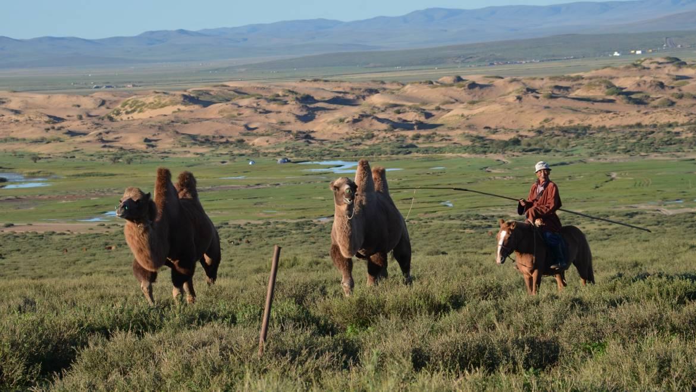 """Seniorenhock """"Mongolei – eine fantastische Reise"""""""